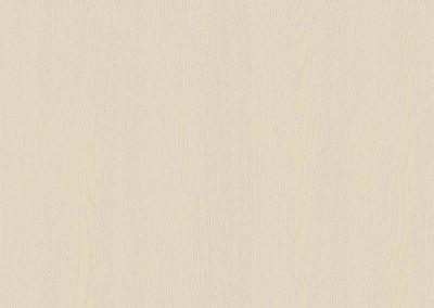Painted Oak Mussel